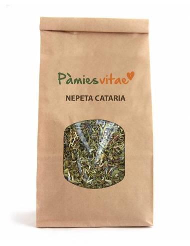 """Nepeta Cataria Ecológica de """"Pàmies Vitae"""" (100 gr)"""